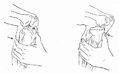 手绘 线稿 412