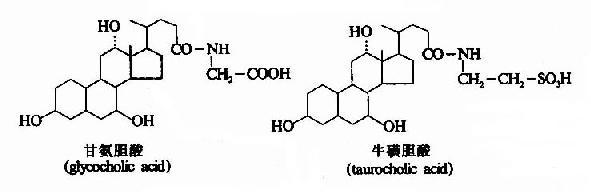 胆汁酸代谢