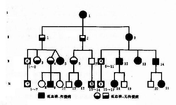 一例抗维生素D佝偻病系谱