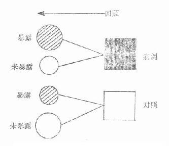 初中统计知识结构图