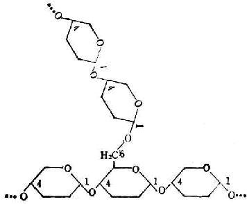 营养学/碳水化物的分类