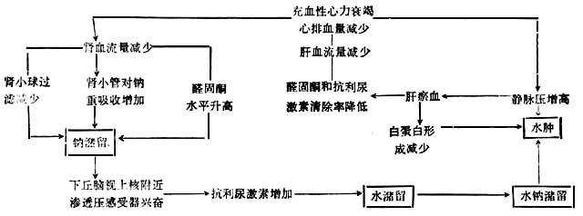 地库自动排水系统电路图