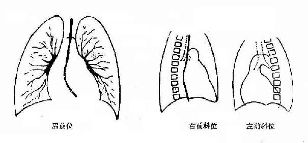 简笔画 设计图 手绘 线稿 605_282