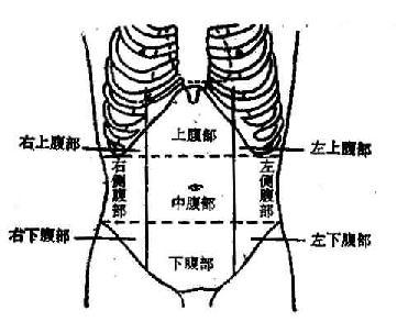 腹部左边有痣图解
