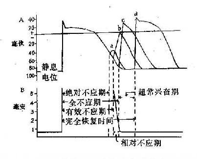 电路 电路图 电子 工程图 平面图 原理图 403_324